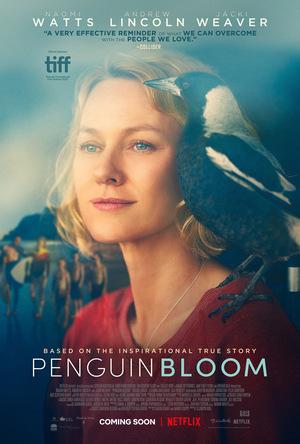 Фільм «Пінгвін Блюм» (2020)