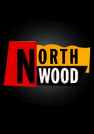 Серіал «Northwood» (1991 – 1994)