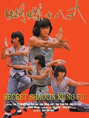 Фільм «Секрет шаолиньского кунг-фу» (1979)