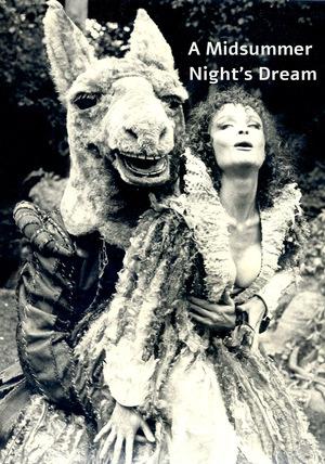 Фильм «Сон в летнюю ночь» (1982)