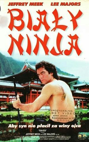 Сериал «Ворон» (1992 – 1993)