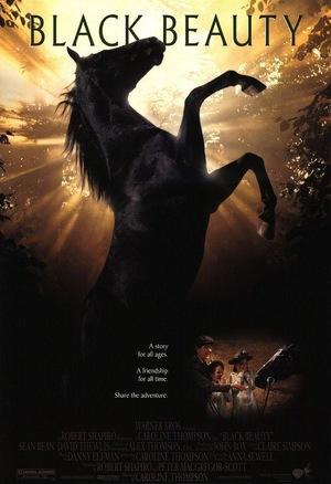 Фільм «Чорний красень» (1994)