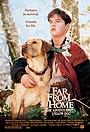 Фильм «Далеко от дома: Приключения желтого пса» (1994)