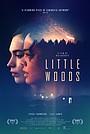 Фільм «Маленькі ліси» (2018)
