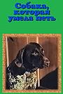 Фильм «Собака, которая умела петь» (1991)