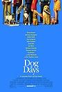 Фільм «Собачі дні» (2018)
