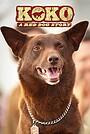 Фільм «Коко: История рыжего пса» (2019)