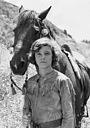 Сериал «Young Dan'l Boone» (1977)