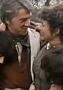 Сериал «Чужое золото» (1985)