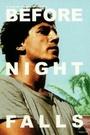 Фільм «Поки не настане ніч» (2000)