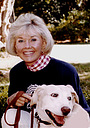 Серіал «Doris Day's Best Friends» (1985 – 1986)