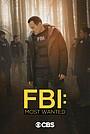 Серіал «ФБР: Найбільш розшукувані злочинці» (2019 – ...)