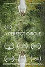 Фильм «A Perfect Circle» (2020)