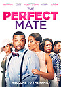 Фільм «The Perfect Mate» (2020)