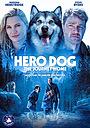 Фільм «Пес-герой: Подорож додому» (2021)