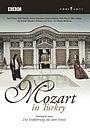 Фильм «Mozart in Turkey» (2000)