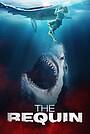 Фильм «The Requin» (2020)