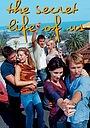 Сериал «Наша секретная жизнь» (2001 – 2006)