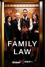 Сериал «Семейная юрфирма» (2021 – ...)