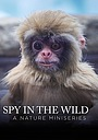 Сериал «Spy in the Wild: A Nature Miniseries» (2017 – ...)