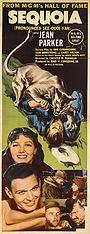 Фільм «Sequoia» (1934)