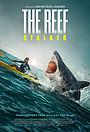 Фільм «The Reef: Stalked»