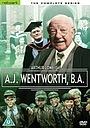 Серіал «A.J. Wentworth, B.A.» (1982)