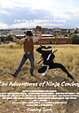 Серіал «The Adventures of Ninja Cowboy» (2009)