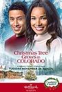 Фильм «A Christmas Tree Grows in Colorado» (2020)