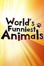 Серіал «The World's Funniest Animals» (2020 – ...)