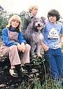 Серіал «The Bagthorpe Saga» (1981)