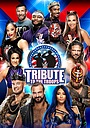 Фильм «WWE Tribute to the Troops» (2020)