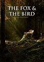 Мультфильм «The Fox and the Bird» (2019)
