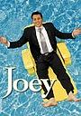 Серіал «Джої» (2004 – 2006)