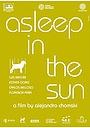 Фильм «Спать на солнце» (2010)