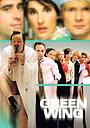 Серіал «Зеленое крыло» (2004 – 2007)