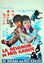 Фільм «Shan Dong da jie» (1973)