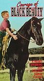 Фильм «Courage of Black Beauty» (1957)