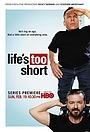 Серіал «Жизнь так коротка» (2011)