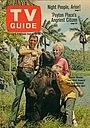 Серіал «Gentle Ben» (1967 – 1969)