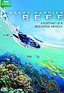 Сериал «Большой барьерный риф» (2012)