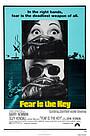Фільм «Страх - це ключ» (1972)