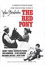 Фильм «Рыжий пони» (1973)