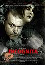 Фильм «Инкогнита» (2012)