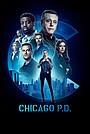 Серіал «Поліція Чикаго» (2014 – ...)
