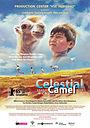 Фільм «Небесний верблюд» (2015)