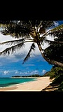Фільм «Mainland To Oahu»