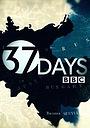 Серіал «37 дней» (2014)