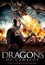 Фильм «Драконы Камелота» (2014)