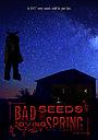 Фільм «Bad Seeds of Loving Spring»